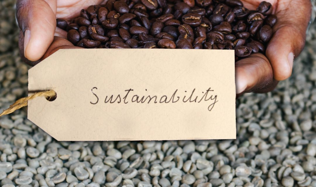 coffee sustainability, connect coffee roasters