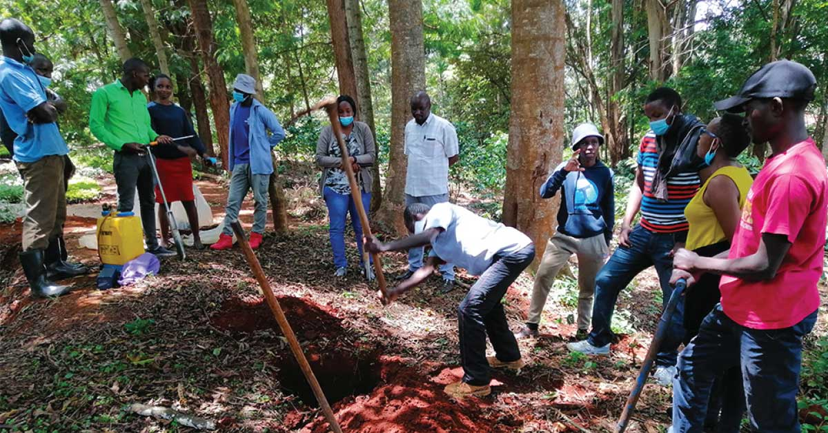 coffee farming, coffee training